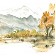 landschaft (30)