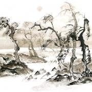 landschaft (4)