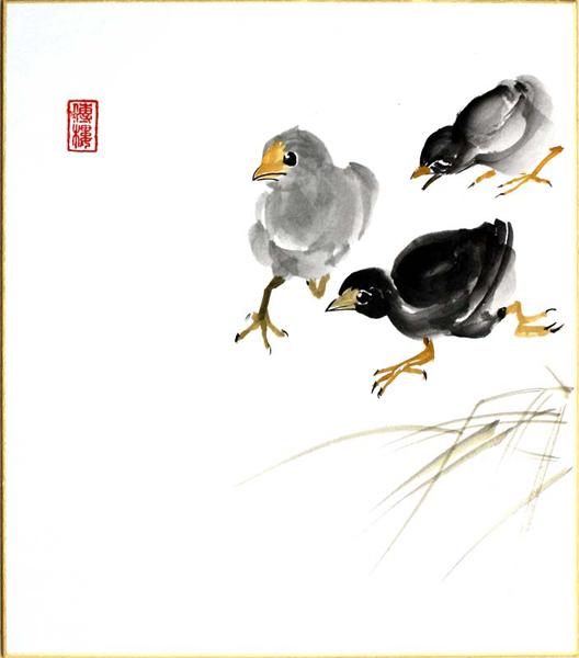 shikishi-gross-09