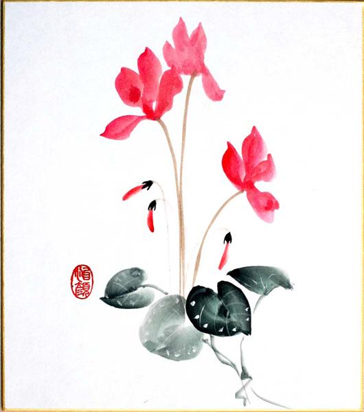 shikishi-gross-11