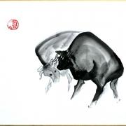 shikishi-gross-14