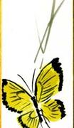 tanzaku (11)