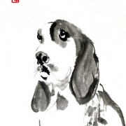 tiere (2)
