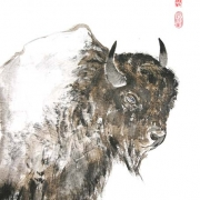 tiere (9)