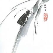 zen-kloster-20