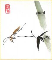 FEBRUAR - Shiki-shi 3